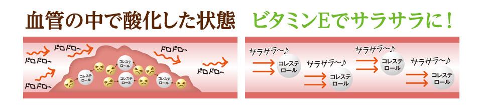 血管の中で酸化した状態 ビタミンEでサラサラに!